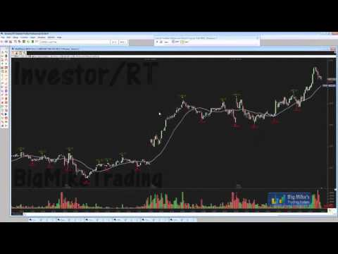 Investor/RT Platform Detailed Overview