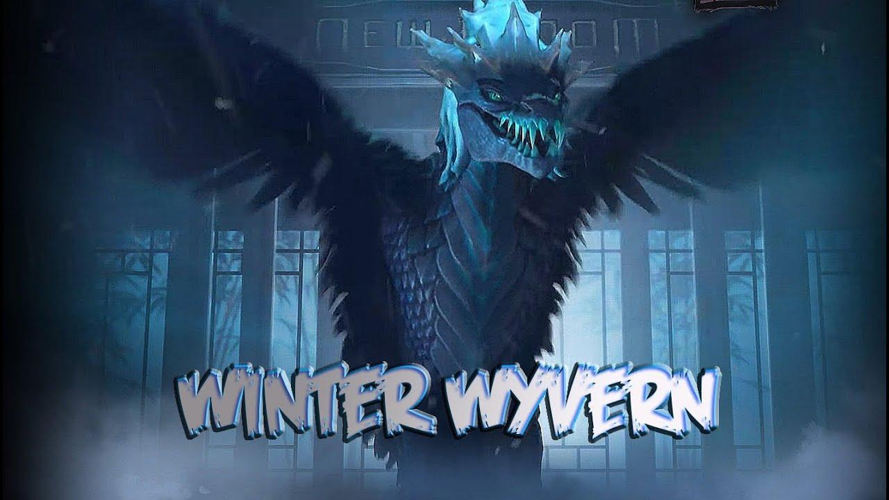 Winter wyvern
