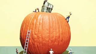 Halloween 2018 | Biggest  Pumpkin of the World