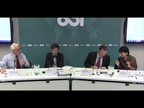 Japan and the UK: a new development cooperation policy post-2015 - Panel discussion