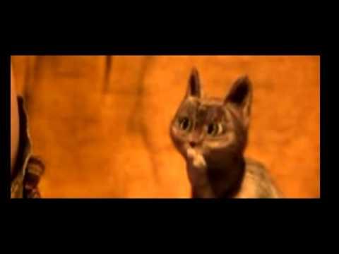 Гиф кот из кота в сапогах