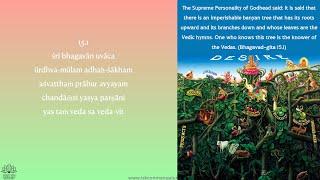 Bhagavad Gita Chapter 15 Batch 3