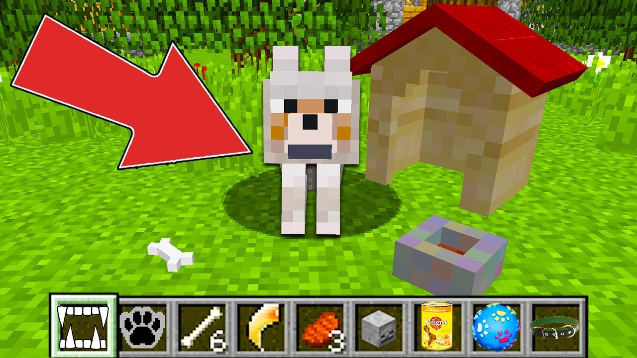 Minecraft – HOW to play WOLF in Minecraft : NOOB WOLF vs ZOMBIE PRO! WOLF LIFE