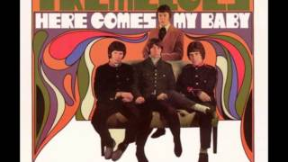 THE TREMELOES Here Comes My Baby 1967 HQ