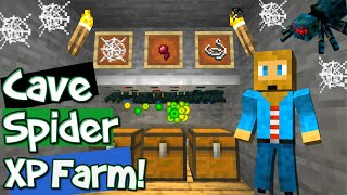 Minecraft Cave Spider XP Farm 1.14 [BEST DESIGN] Cave Spider XP Farm Tutorial