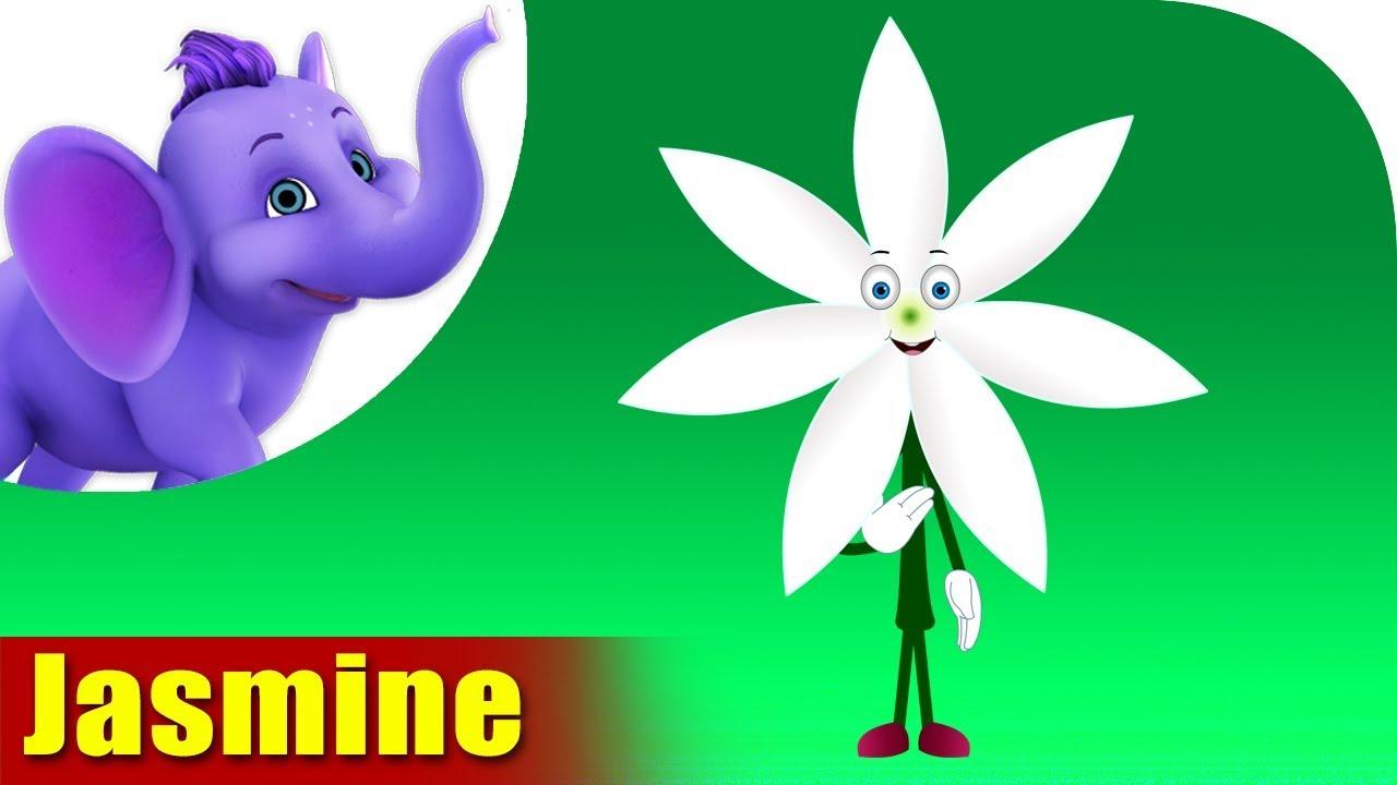 Jasmine Flower Song 4k Appu Series Youtube