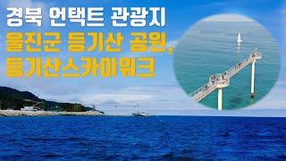 경북 언택트 여행지 울진 등기산공원 스카이워크