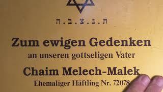 Grußworte unserer Freunde aus Israel - stellvertretend von Michael Shubits am Waggon in Kaufering
