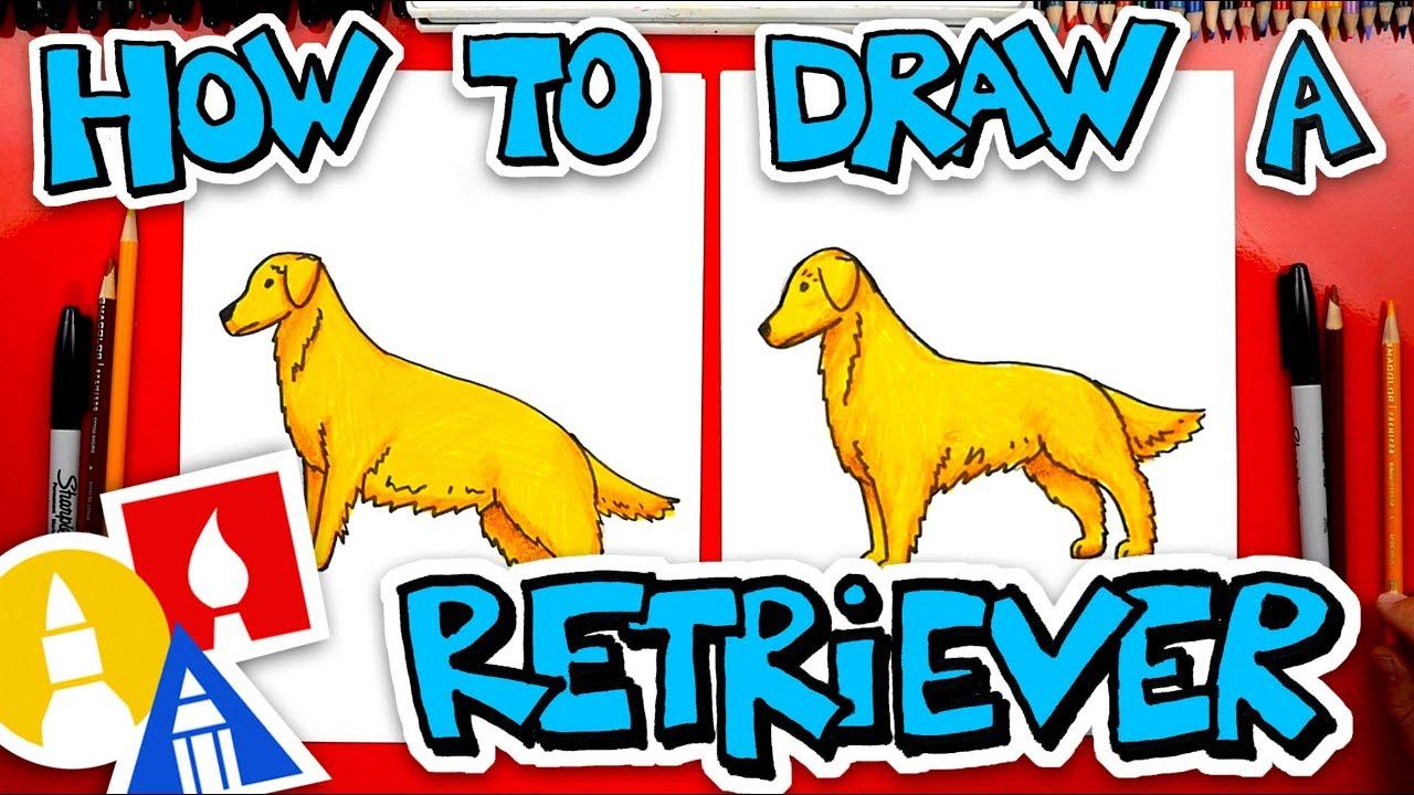 How To Draw A Golden Retriever