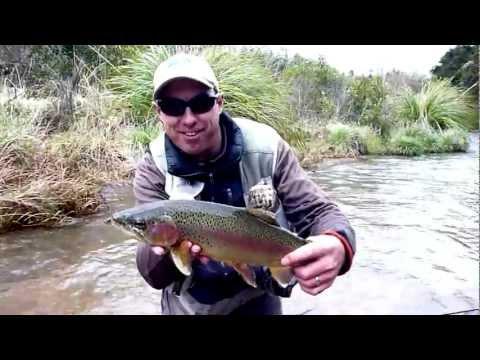 Fly Fishing The Tauranga-Taupo River