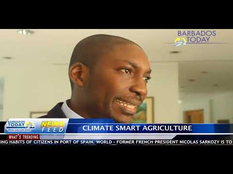 BARBADOS TODAY EVENING UPDATE - March 29, 2018