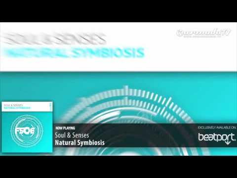 Soul & Senses - Natural Symbiosis (Original Mix)