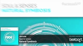 Soul & Senses - Natural Symbiosis (Original Mix)