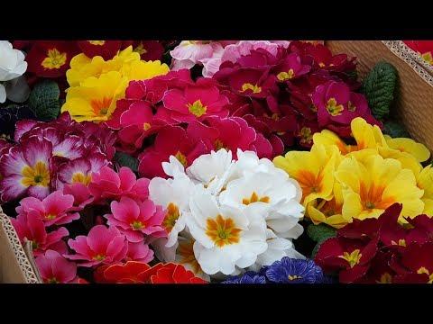 На самом большом цветочном рынке Армении можно найти любые цветы