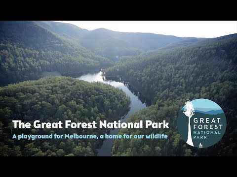 The Great Forest National Park - A Vision for Victoria