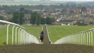 Newmarket - Made for the Racehorse (Short version)