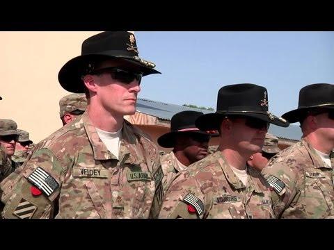 Air Cavalry Cap