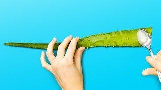 10 Cara Menggunakan Lidah Buaya || Manfaat Kesehatan Dan Kecantikan
