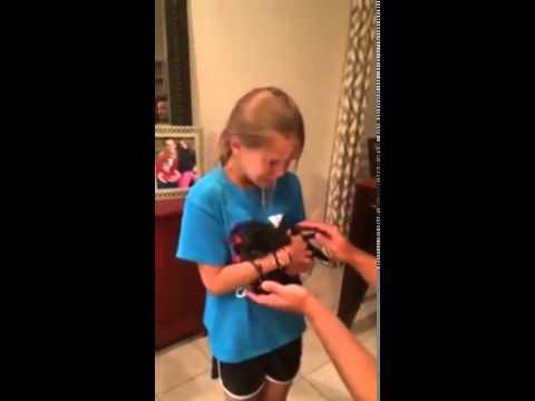 Puppy Surprise Meltdown   Video