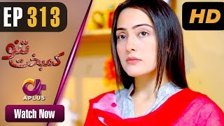 Pakistani Drama | Kambakht Tanno - Episode 313 | Aplus Dramas | Nousheen Ahmed, Ali Josh