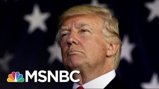 What Are Spies Around The World Learning From Donald Trump's Tweets? | The 11th Hour | MSNBC