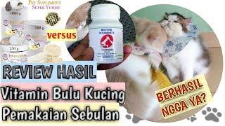 Review Hasil Pemakaian Vitamin Bulu Kucing dan Suplemen Makan  Biotine dan Pinkpawpal