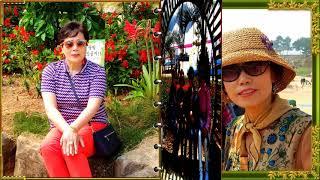 수지남 초등 동창모임,안면도1박2일 꽃,빛축제 2019…