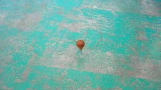20090406国际交流社-玩·陀螺I