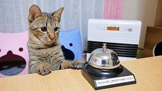 ご用の猫はベルを押してください