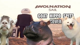 Baixar Awolnation - Sail (animal cover)