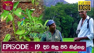Sobadhara - Sri Lanka Wildlife Documentary | 2019-07-26 | Nilgala ( නිල් ගල) Thumbnail