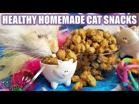 How to make THE BEST HOMEMADE KITTY TREATS (grain-free, high-protein cat recipe!)