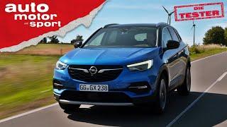 Opel Grandland X: Ein echter Opel? - Test/Review   auto motor und sport