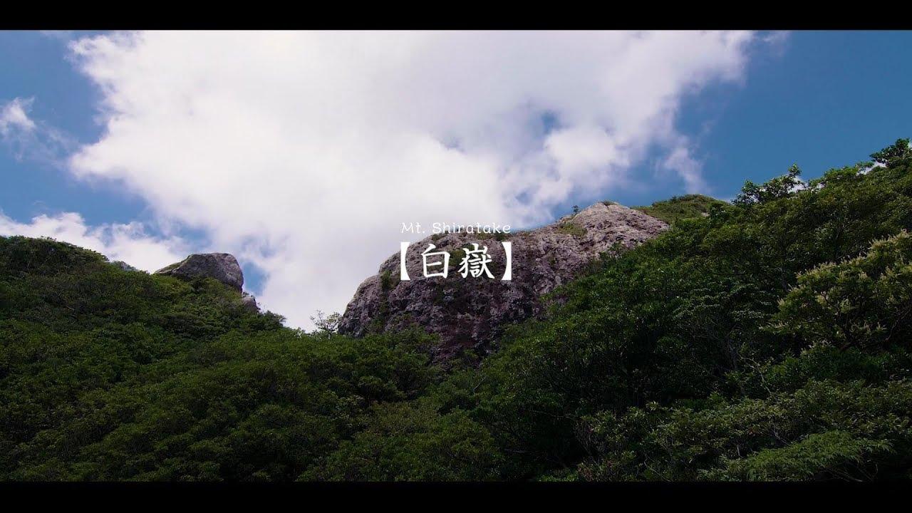 【予告動画】