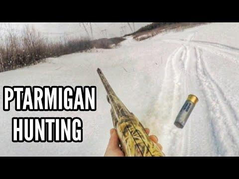 PTARMIGAN HUNTING! - QUEBEC BIRD HUNTING!