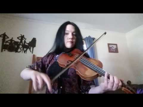 Drowsy Maggie & The Butterfly Irish Fiddle