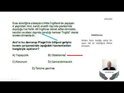 22)Erken Çocukluk / Dil Gelişimi - I - Ayşegül ALDEMİR (2020)