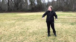 Overcoming Dog/dog Aggression (reactivity)