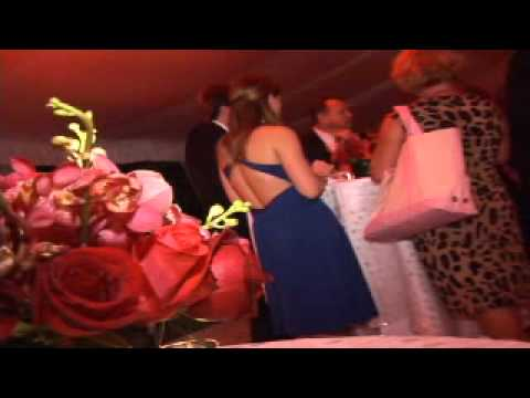 Wedding Decorations - Molly- Tiffany Nieves - Drea...