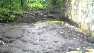 Lava Flows from Mt Matavanu Volcano - Saleaula Lava Fields in Savai'i Samoa