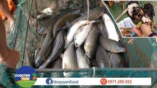 KÉO LƯỚI BẮT CÁ QUÁ ĐÃ! THU HOẠCH KHỦNG: 5 TẠ CÁ TRẮM CỎ (Trắm Trắng)✦ Huge Grass Carp Fishing