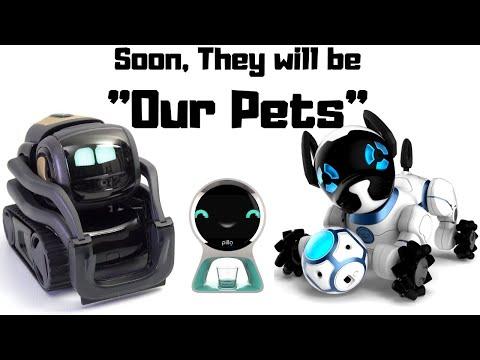 Best Robot Pet