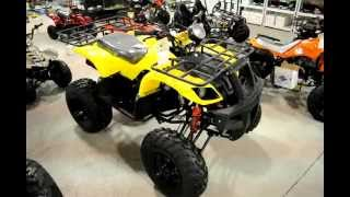 150cc Utility ATV for Sale Cheap * Low Price Utility ATV