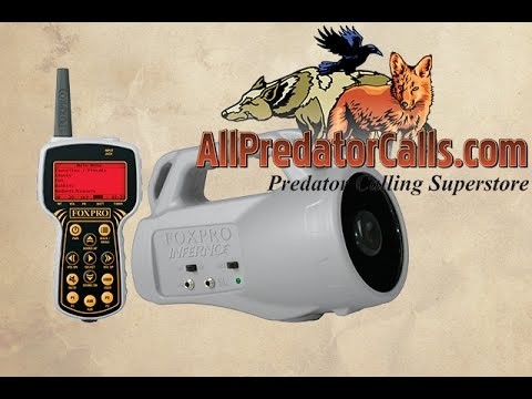 Buyer's Guide: Best Electronic Coyote Calls