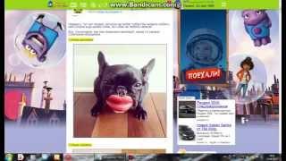 фотографии смешных собак