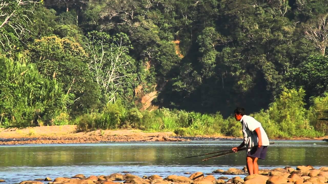 Жители Амазонки стареют медленнее остальных людей. В чем секрет молодости?