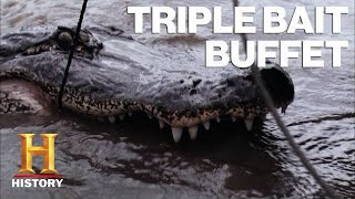 Swamp People: 6 Types of Gator Bait Lure in MASSIVE Gators | History