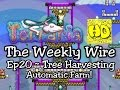 Terraria The Weekly Wire Ep20 Automatic Tree Farm! (1.3 tutorials & guides)