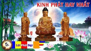 Kinh Phật  Giáo cho ai đang gặp khó khăn khổ đau - Nghe đến đâu An Lạc đến đó Linh Nghiệm Vô Cùng