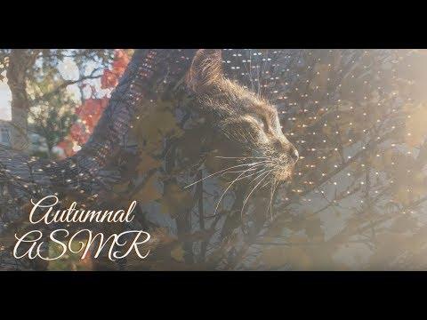 Autumnal ASMR (Softly Spoken Poem + Gentle Outdoor Sounds)